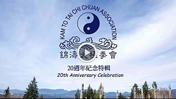 20th anniversary video